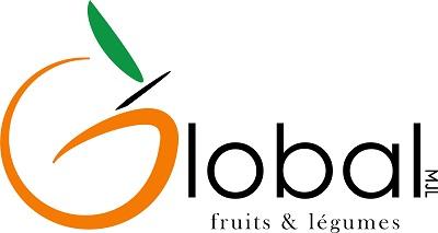 logo GlobalMJL